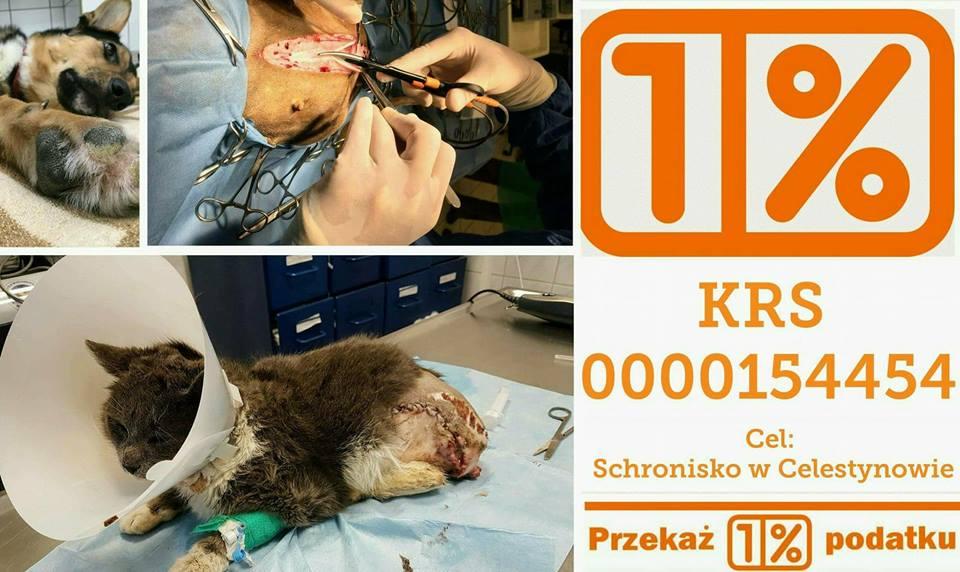 Pomóż nam ratować życie!