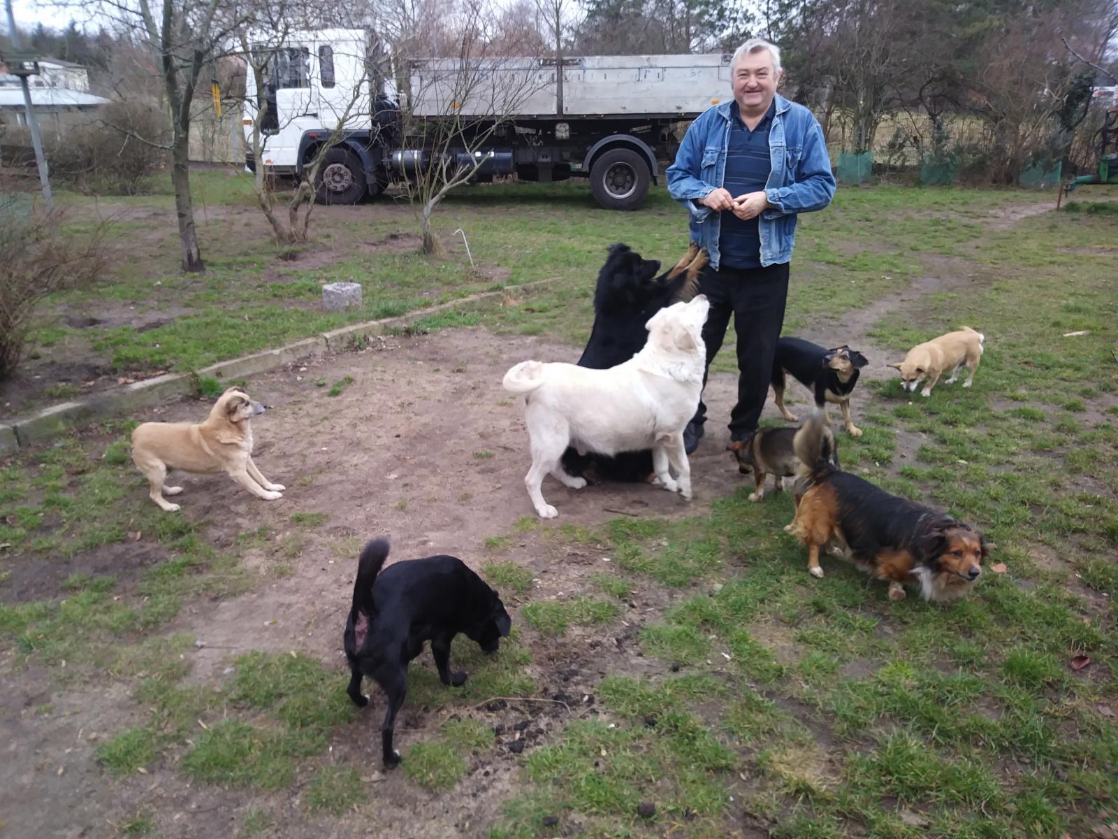 Zbiórka żywności dla bezdomnych zwierząt w Biedronce w Łagowie