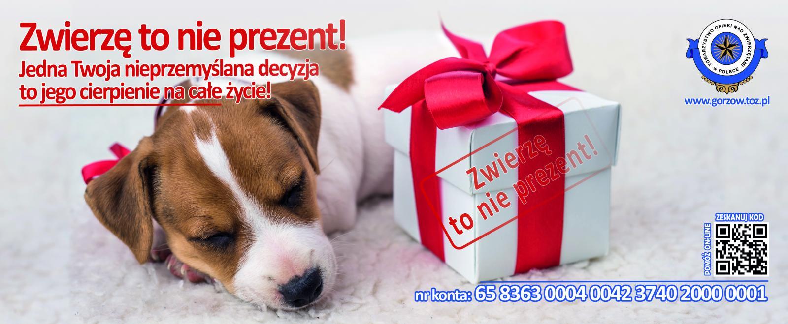 Zwierzę to nie prezent!