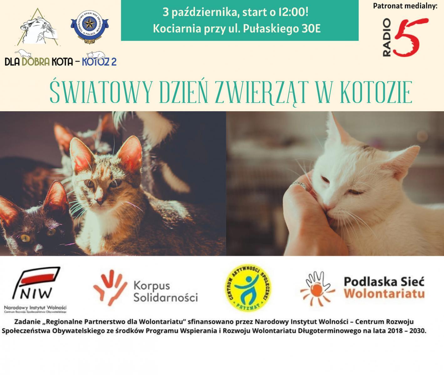 Światowy Dzień Zwierząt w KoTOZie