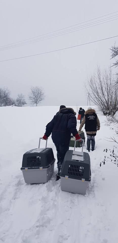 Ciężka zimowa interwencja