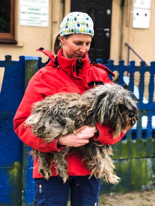 prosimy o głosy dla Ewy Bieniek w plebiscycie Serce dla Zwierząt