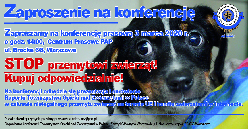 Konferencja poświęcona nielegalnemu przemytowi zwierząt towarzyszących i handlu zwierzętami w internecie