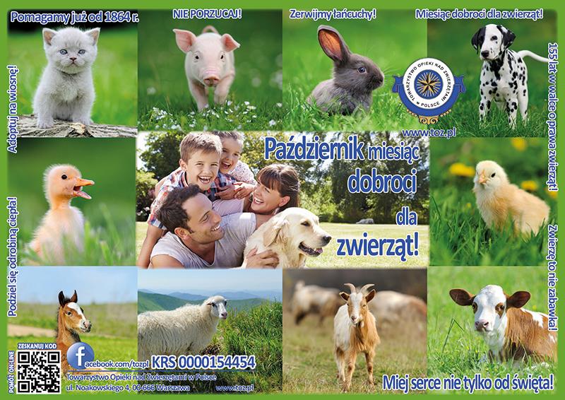 Październik  miesiąc dobroci dla zwierząt
