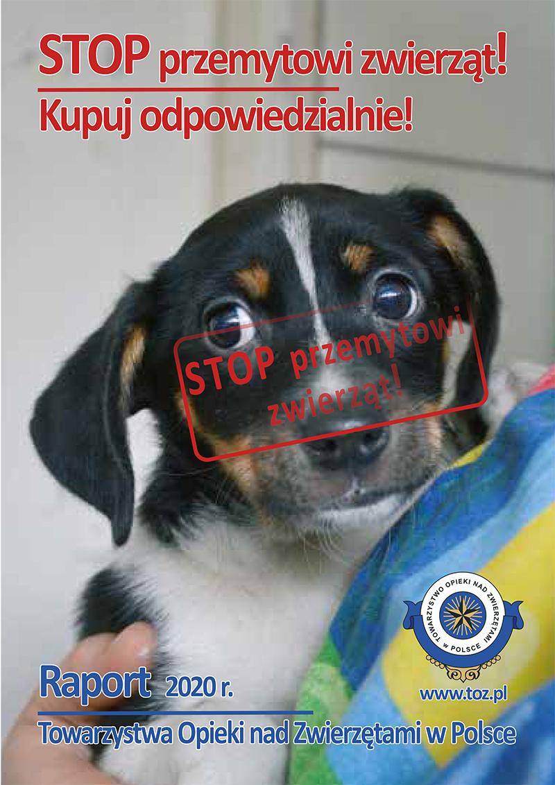 Raport dotyczący nielegalnego przemytu zwierząt towarzyszących i handlu zwierzętami w internecie